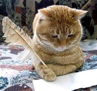 кот писарь